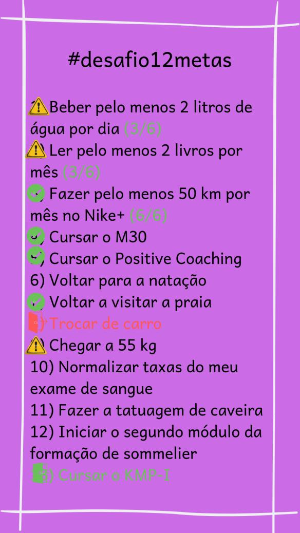 desafio12metas-status-semestre